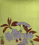 橋本明治 「桜」 3F