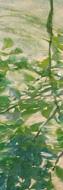 「風の音・水の音」910×303mm