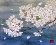 岡田博明 「桜」3F