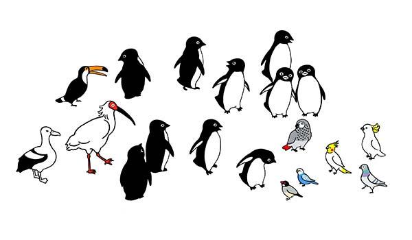 坂崎千春 「ペンギンと鳥たちの広場」 (515x300)