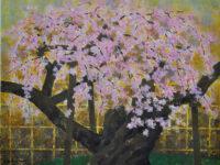 「御車返しの桜」 20P