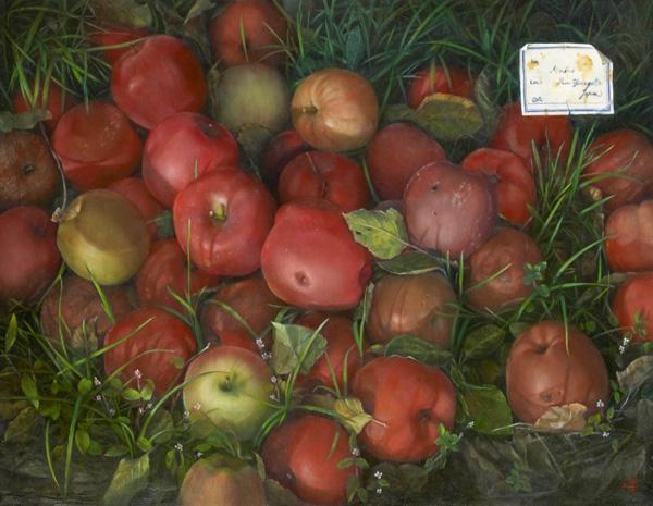 りんご図譜』 10F