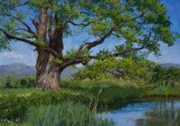 「古木のある水辺」 4F