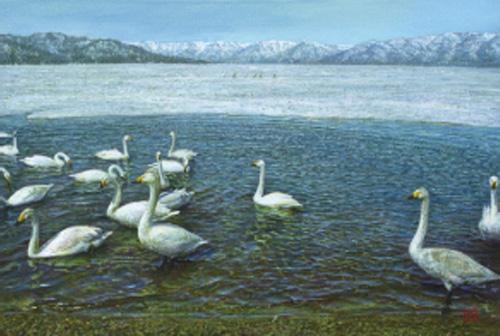 「湖に鳥」  12M
