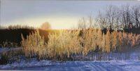 「凍える明けの奏で」 45×90cm