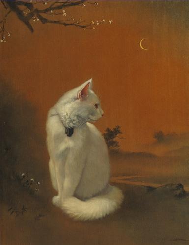 「月下白猫図」  10P