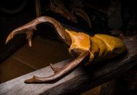 「アラガールホソアカクワガタ」 50×30×20cm +台座 (ゴールデンマーブル、ブロンズ、古材)