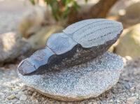 「苔生すオサムシ」 43.5×15×h14.5cm + 台座 黒御影石
