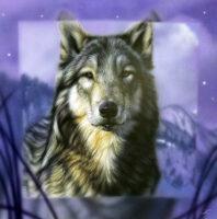 「冬の狼」 S4