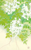 「五月の風」 10M