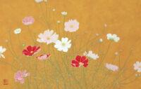 「秋桜」 10M