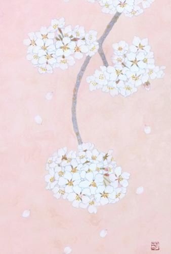 「桜」  4P
