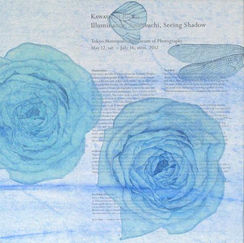 「Innocent blue ⅩⅥ」  3S(273×273mm)
